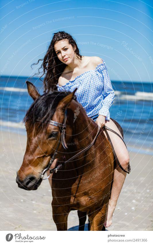 Junges attraktives Mädchen, das auf einem braunen Pferd am Meer sitzt. Ferien & Urlaub & Reisen Sommer Strand Mensch Junge Frau Jugendliche Erwachsene 1 Natur