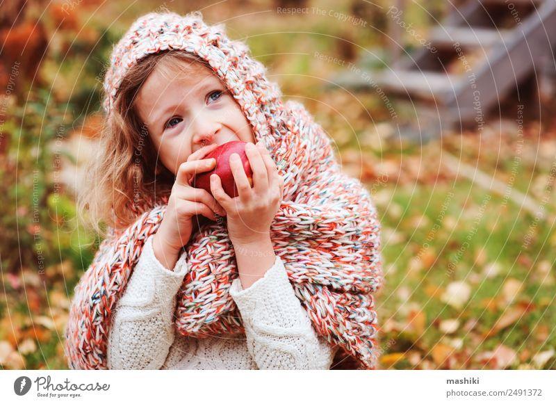 fröhlich lustiges Kind Mädchen isst frischen Apfel im Herbst Frucht Lifestyle Freude Spielen Garten Kindheit Natur Wärme Blatt Wald Schal Lächeln Fröhlichkeit