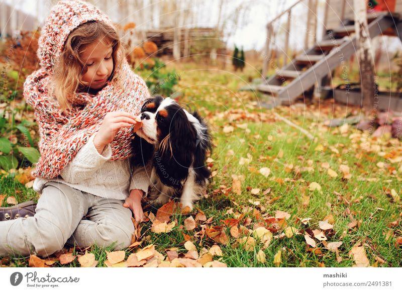 fröhliches Kind Mädchen, das im Herbst mit ihrem Hund spielt. Lifestyle Freude Glück Spielen Garten Familie & Verwandtschaft Freundschaft Kindheit Natur Wärme
