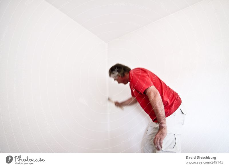 Meister des Pinsels Mensch Mann weiß rot Farbe Erwachsene Leben Wand Bewegung Arbeit & Erwerbstätigkeit maskulin Ecke einzeln T-Shirt malen streichen