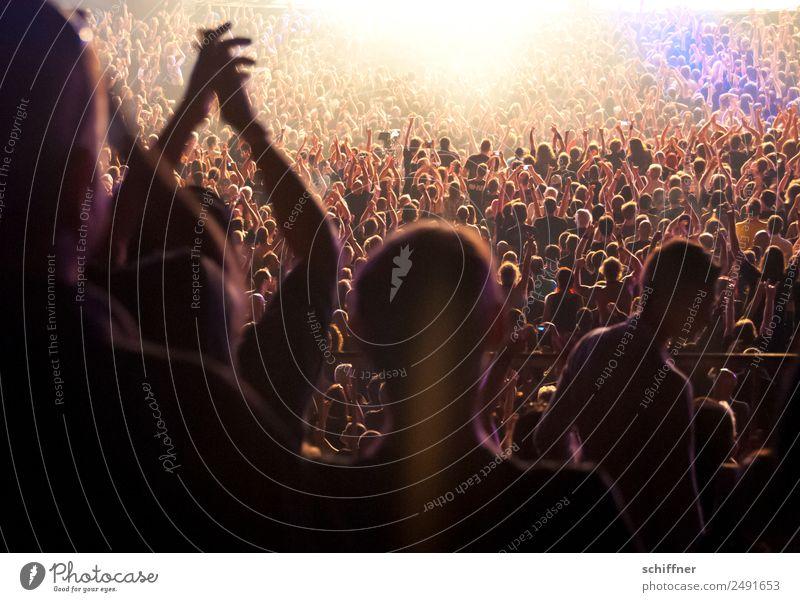 Spot on! Mensch Lifestyle Feste & Feiern Menschengruppe Freizeit & Hobby Musik viele Veranstaltung Rockmusik Menschenmenge Publikum Applaus Entertainment