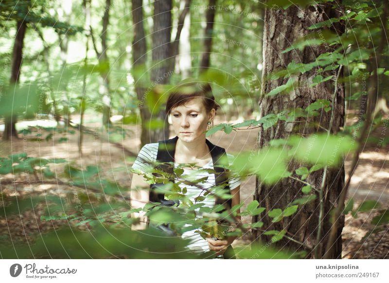 waldschrat Erholung ruhig Duft Ausflug feminin Junge Frau Jugendliche Erwachsene 1 Mensch 18-30 Jahre Umwelt Natur Pflanze Baum Blatt Wald T-Shirt brünett