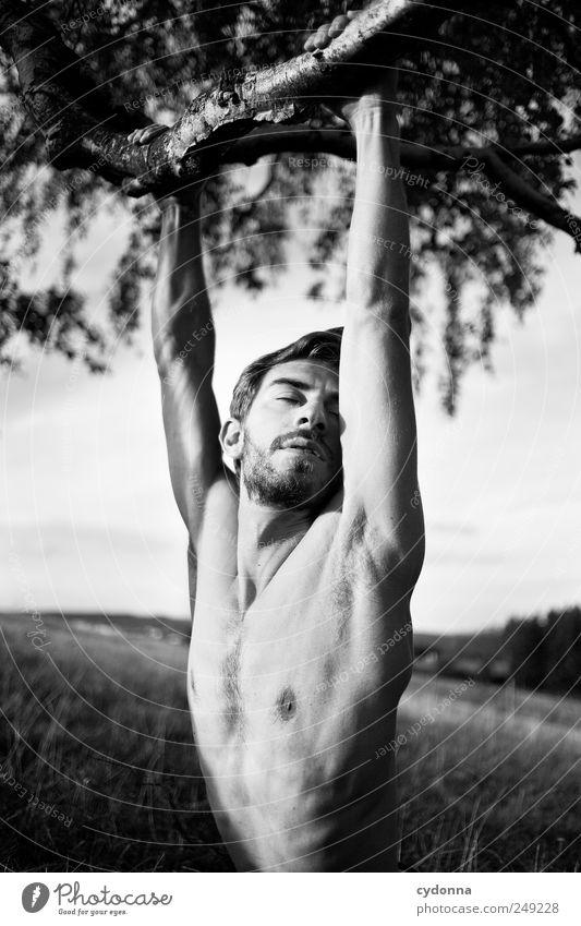 NATUR & ICH II Mensch Natur Jugendliche schön Baum Sommer ruhig Erwachsene Erholung Umwelt Landschaft Leben Wiese Erotik nackt Gefühle