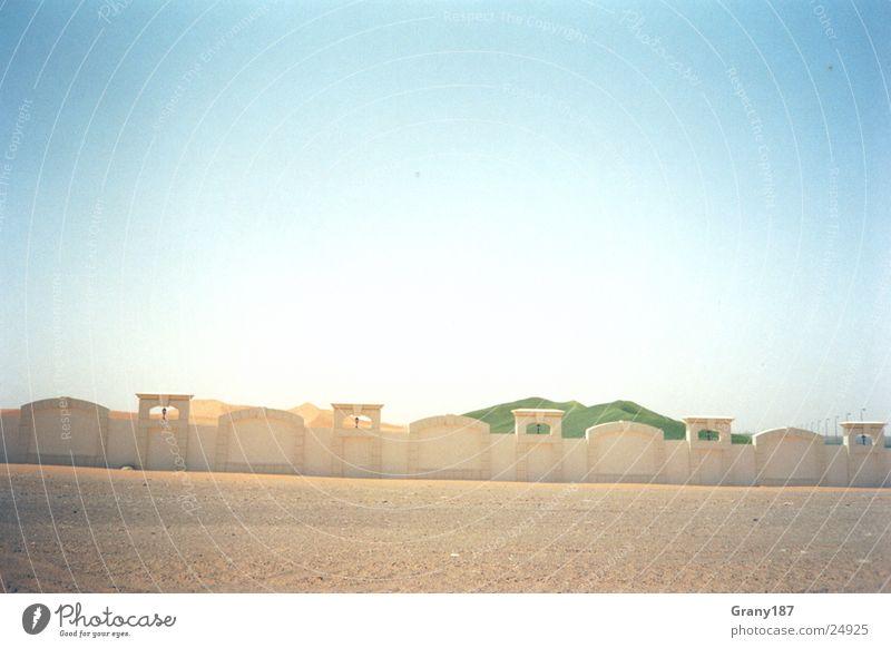 Wüstenbegrünung Sonne Gras Wärme Sand Physik heiß Stranddüne Scheich