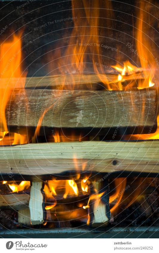 Flammen Natur Pflanze Garten Holz Wärme Brand Feuer Grillen brennen Flamme Grill Kamin Textfreiraum Schrebergarten heizen Feuerstelle