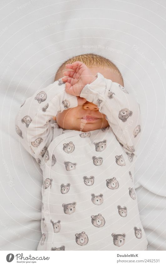 Immer diese Paparazzi Mensch weiß Hand ruhig Gefühle klein Kopf orange braun rosa Angst Körper liegen Finger Baby einzigartig
