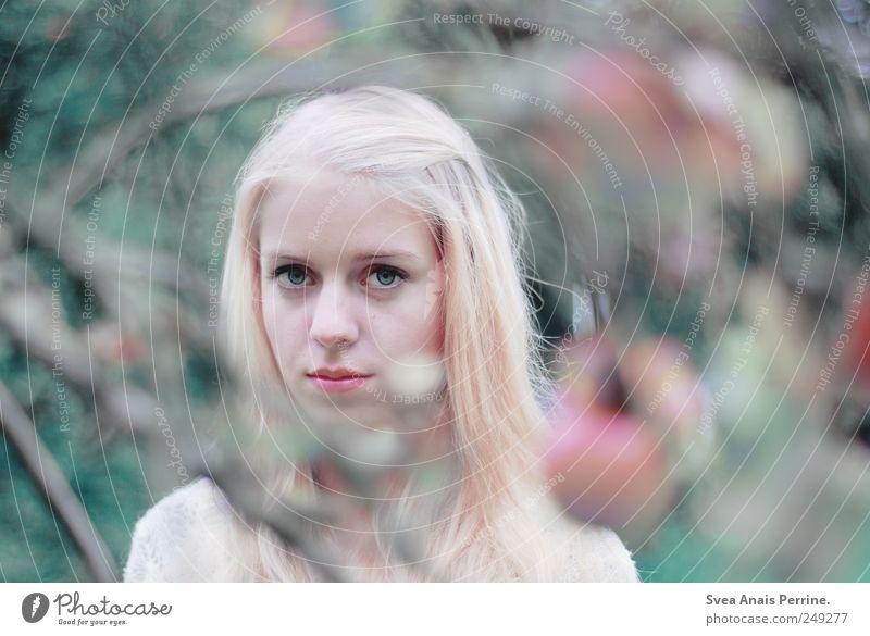 eis. feminin Junge Frau Jugendliche Haare & Frisuren Gesicht 1 Mensch 18-30 Jahre Erwachsene Umwelt Natur Schönes Wetter Ast verzweigt blond langhaarig träumen