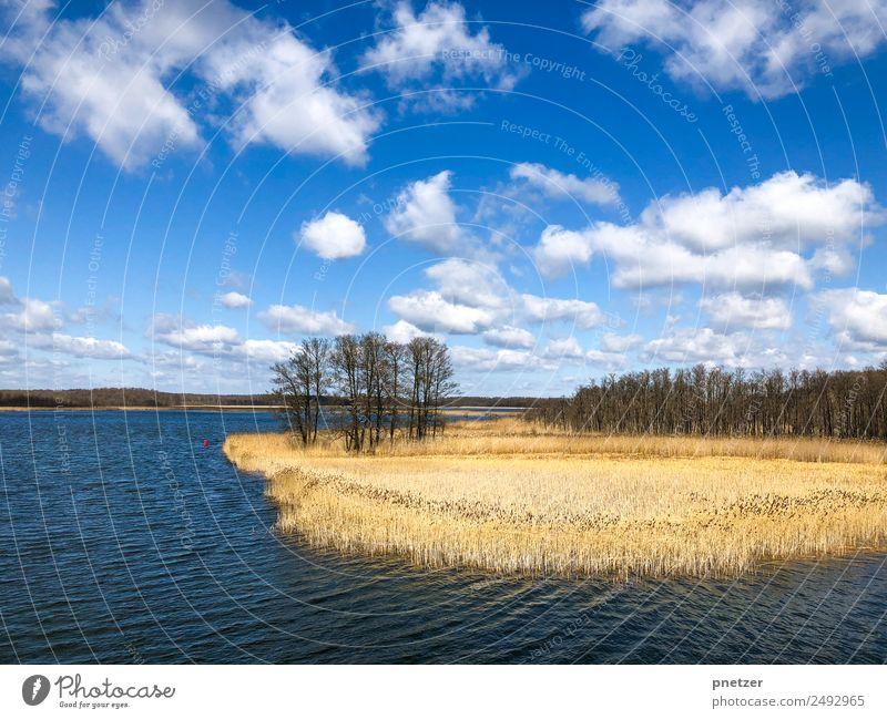 See Himmel Natur Sommer Pflanze Wasser Landschaft Sonne Baum Wolken Tier Freude Wald Umwelt Gefühle Küste