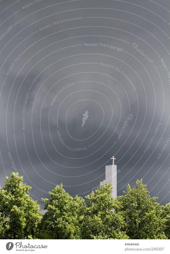 um Himmels willen Natur grün Baum Pflanze Himmel (Jenseits) Wolken Wald dunkel Landschaft grau Religion & Glaube Stein Luft Regen Wetter