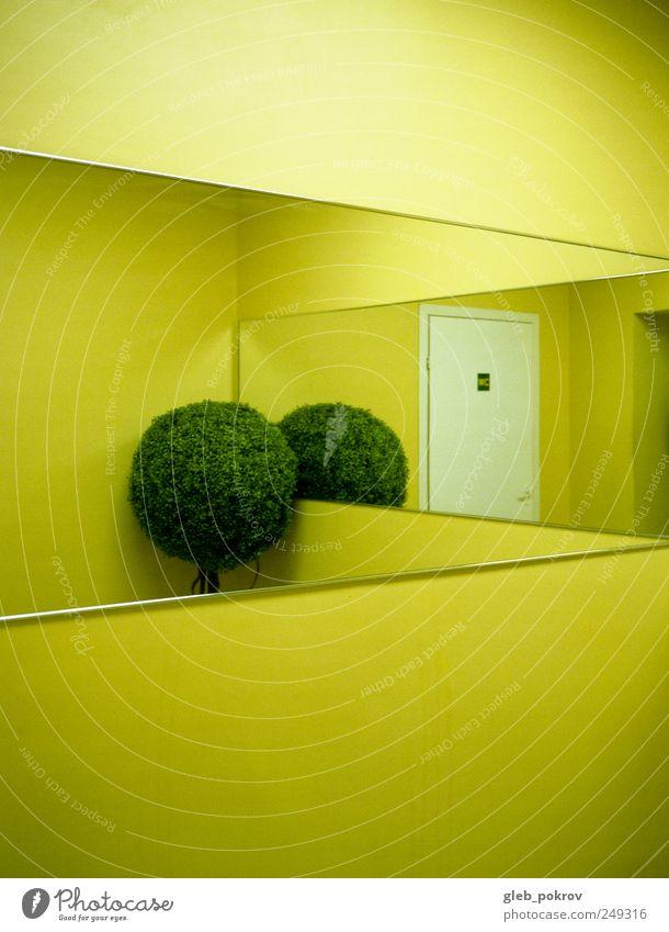 """Doc #inside Mauer Wand Design """"pokrov gleb"""". gleb pokrov Sibirien russland,"""" Russland 645 Farbfoto Innenaufnahme abstrakt Strukturen & Formen Menschenleer"""