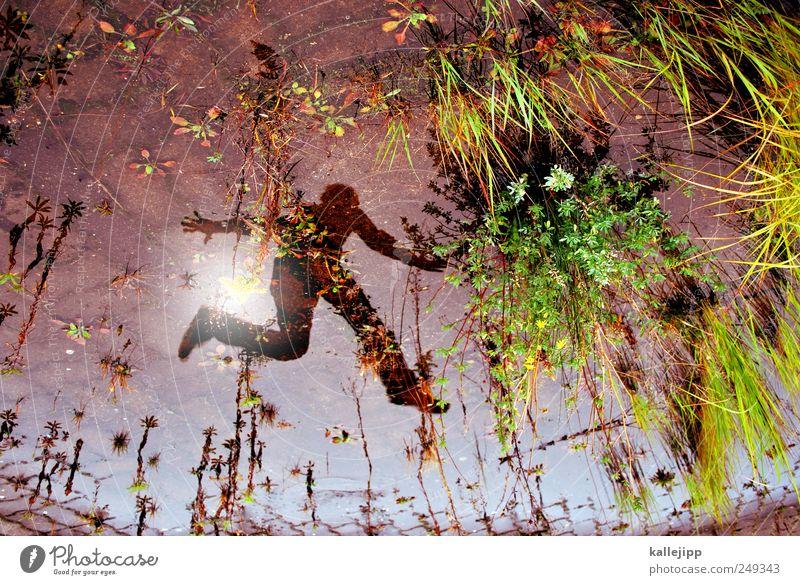 gestern ist vielleicht zu spät Mensch Natur Mann Wasser grün Pflanze Sonne Tier Erwachsene Umwelt Gras Stein springen Erde Wachstum Sträucher