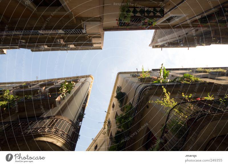 Gassenhauer Lifestyle Stil Städtereise Häusliches Leben Wolkenloser Himmel Grünpflanze Barcelona Spanien Haus Fassade Balkon dunkel hoch schön Klischee