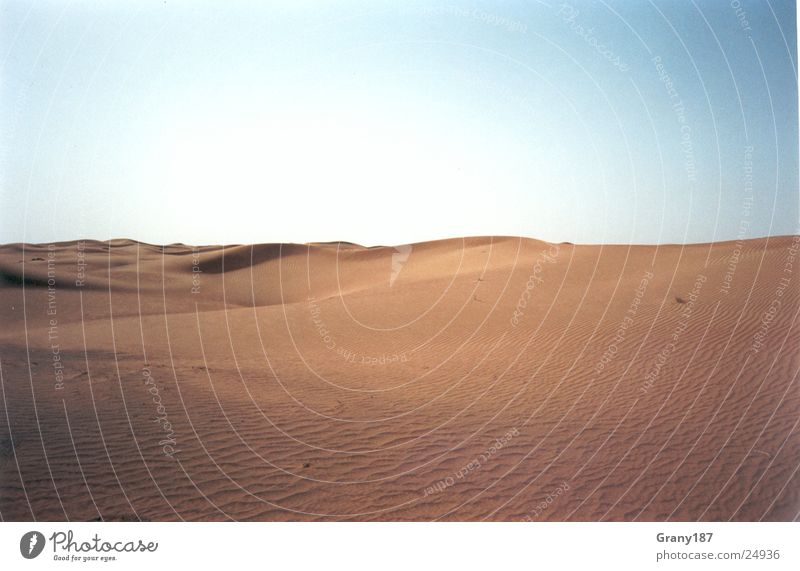 Brennend heißer Wüstensand.... Natur Wasser Sonne grün Straße Farbe Gras Wärme Sand Linie fahren Physik Autobahn Amerika