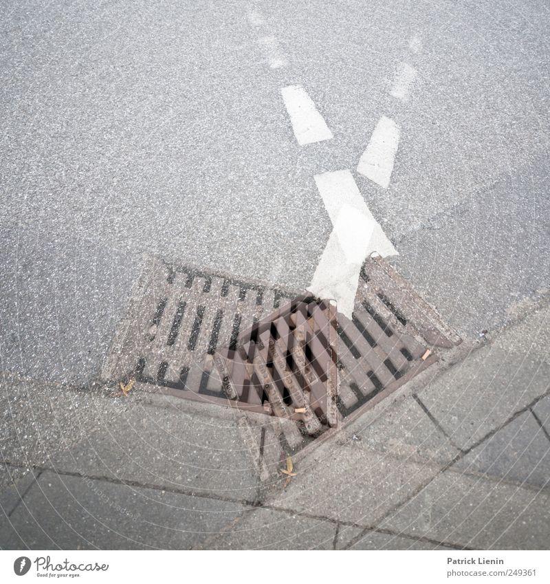 Ausnahmen haben kurze Beine Straße Leben Umwelt Wege & Pfade Freizeit & Hobby laufen Platz Verkehr außergewöhnlich Lifestyle Asphalt Gesellschaft (Soziologie)