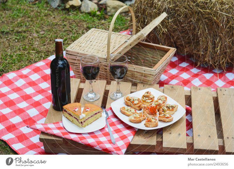 Outdoor-Picknick mit Wein auf karierter Tischdecke und Korb. Brot Flasche Löffel Erholung Sommer Küche Gras Wiese Verkehr Bekleidung Stoff schreiben tragen hell