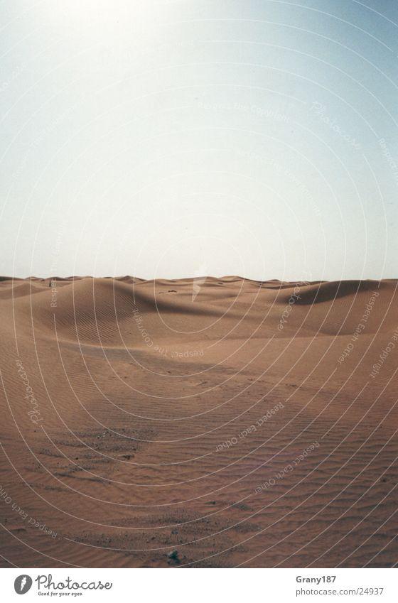 5000 Km Sand....... Natur Sonne grün Ferien & Urlaub & Reisen Straße Farbe Gras Wärme Linie groß fahren Wüste Physik heiß Autobahn