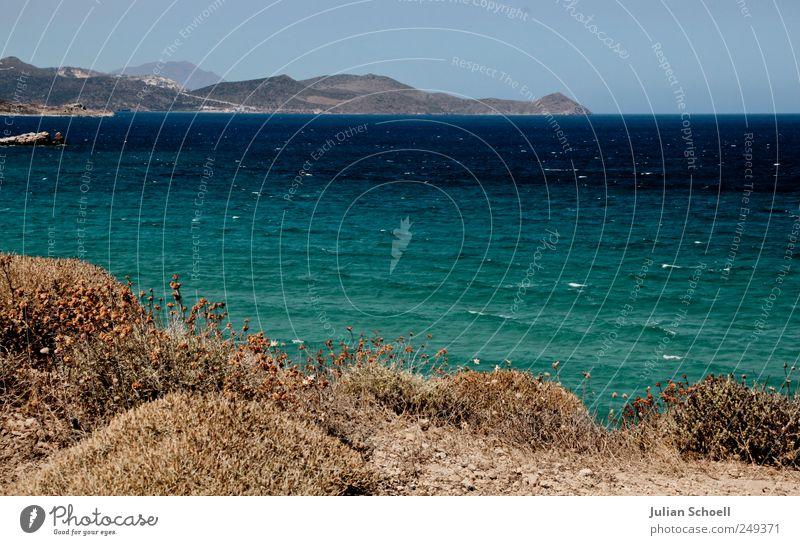 Meer ist mehr Landschaft Pflanze Erde Sand Wasser Himmel Sommer Schönes Wetter Wind Gras Sträucher Wildpflanze Wellen Küste Insel Milos Griechenland