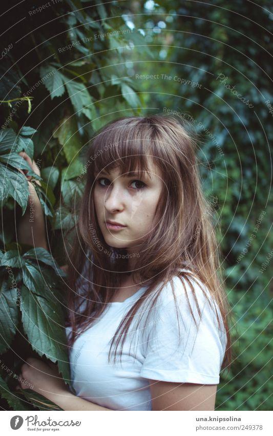 reh Frau Mensch Natur Jugendliche Pflanze Wald feminin Umwelt Erwachsene Denken Angst natürlich gefährlich Sträucher T-Shirt festhalten