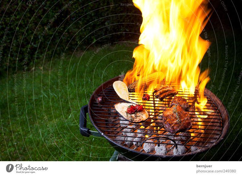 feuer&flamme Lebensmittel Fleisch Gemüse genießen heiß hell gelb Grill Flamme Feuer Grillrost Steak Wurstwaren Kohle Tomate Zucchini Aubergine Rosmarin Grillen