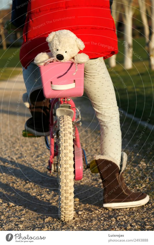 Mädchen auf dem Fahrrad mit Teddybär im Korb Freude Leben Fahrradfahren 3-8 Jahre Kind Kindheit Frühling Herbst Winter Park Spielzeug Puppe genießen Bicicicleta