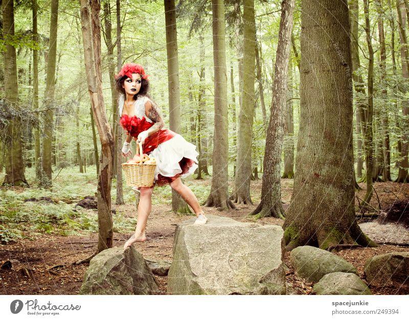 Auf der Flucht vor dem bösen Wolf Mensch Jugendliche Baum Pflanze rot Blatt Wald feminin Landschaft Erwachsene Mode Angst Felsen laufen außergewöhnlich beobachten