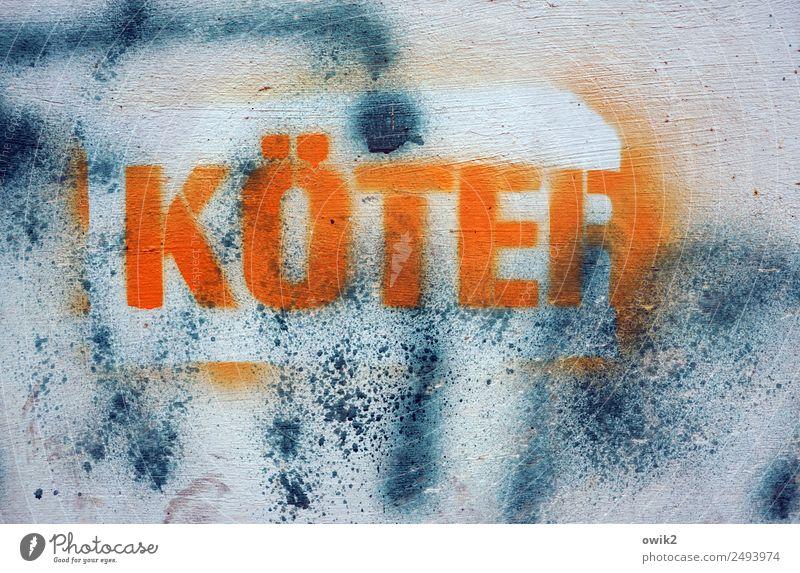 Tierliebe Subkultur Graffiti Mauer Wand Hund Großbuchstabe Neid Verachtung Wut Ärger gereizt Feindseligkeit Frustration Verbitterung Aggression Hass Schimpfwort