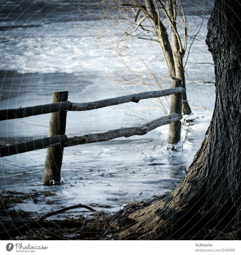 stillgefroren Wasser alt blau Baum Winter ruhig kalt Landschaft Holz Küste See Wetter braun Wellen Eis Frost
