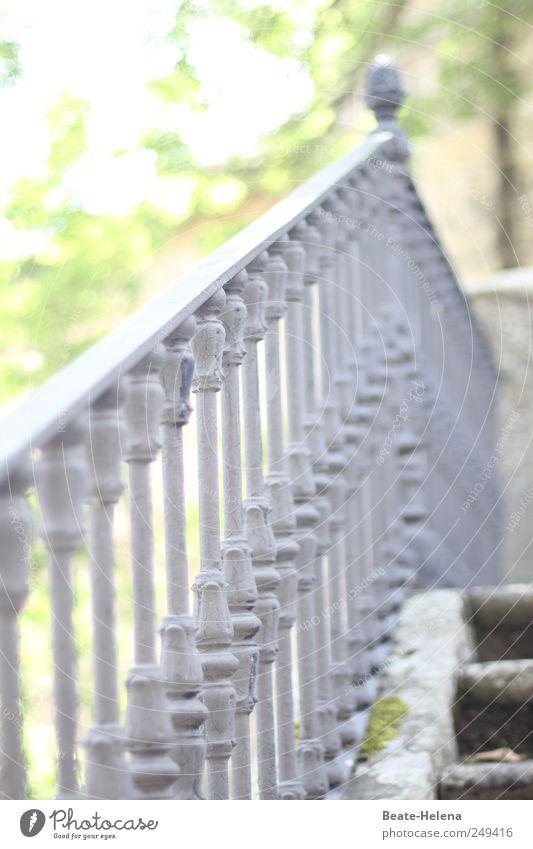 Ein direkter Weg nach oben alt grün Sommer Garten grau Bewegung Stil Stein Metall Park Kraft gehen elegant Treppe ästhetisch entdecken