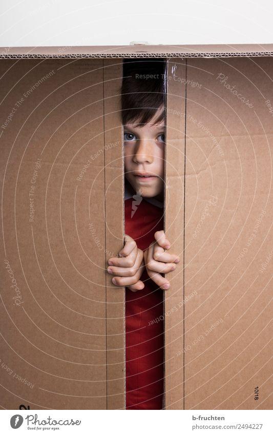 Suche mich! Schulkind Junge Kindheit Gesicht 8-13 Jahre Spielzeug Verpackung Paket gebrauchen Blick braun Freude verstecken einsperren Finger spielend aufmachen