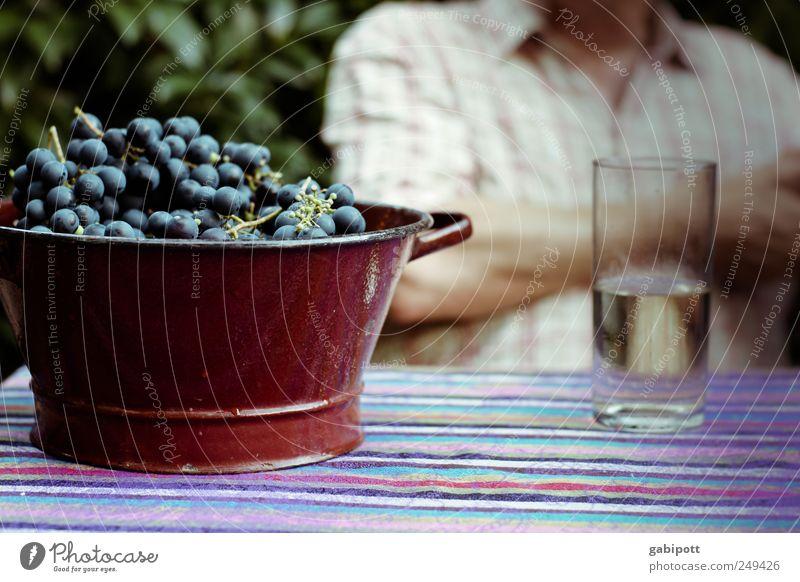 Pfälzer Lebensart blau Erholung natürlich Gesundheit braun Frucht Glas sitzen genießen Getränk Lebensfreude trinken lecker Gelassenheit Wein Wohlgefühl