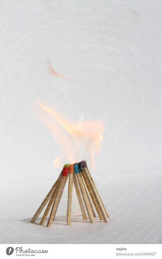 zündende idee Feuer Holz stehen heiß Beratung Gesellschaft (Soziologie) Team Teamwork Vergänglichkeit Zusammenhalt brennen brennbar Idee entzünden Flamme Funken