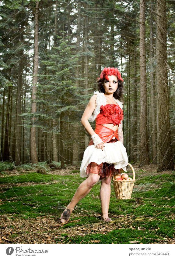 Fairytale (2) Mensch Natur Jugendliche grün schön Baum Pflanze rot Erwachsene Wald feminin Umwelt Landschaft Traurigkeit träumen gehen