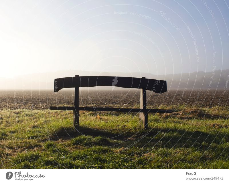 Herbstmorgen Landschaft Sonnenlicht Nebel Wiese Feld Stadtrand Menschenleer Bank Holz Ruhe Erholung Außenaufnahme Morgen