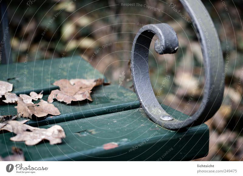 Herbstbank alt grün Blatt Einsamkeit kalt Traurigkeit Park Wetter braun sitzen Trauer Bank Vergänglichkeit silber Stillleben