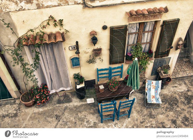 Mittagsruhe blau Pflanze Haus Fenster Wand Mauer Tür Wohnung Fassade Tisch Häusliches Leben Dekoration & Verzierung Stuhl Italien Dorf Möbel