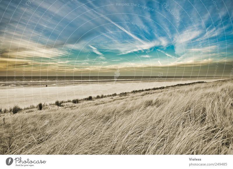 Spiekeroog | ...paradise Himmel Natur Strand Meer Wolken Erholung Landschaft Sand Insel Nordsee Düne entdecken Dünengras Wolkenfetzen