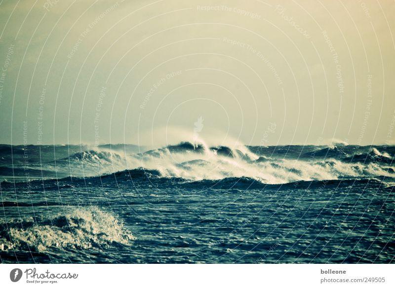 Die Welle Umwelt Natur Urelemente Wasser Himmel Wetter Sturm Wellen Küste Nordsee Meer dunkel blau Bewegung bedrohlich Horizont Klima Kraft Ferne Brandung