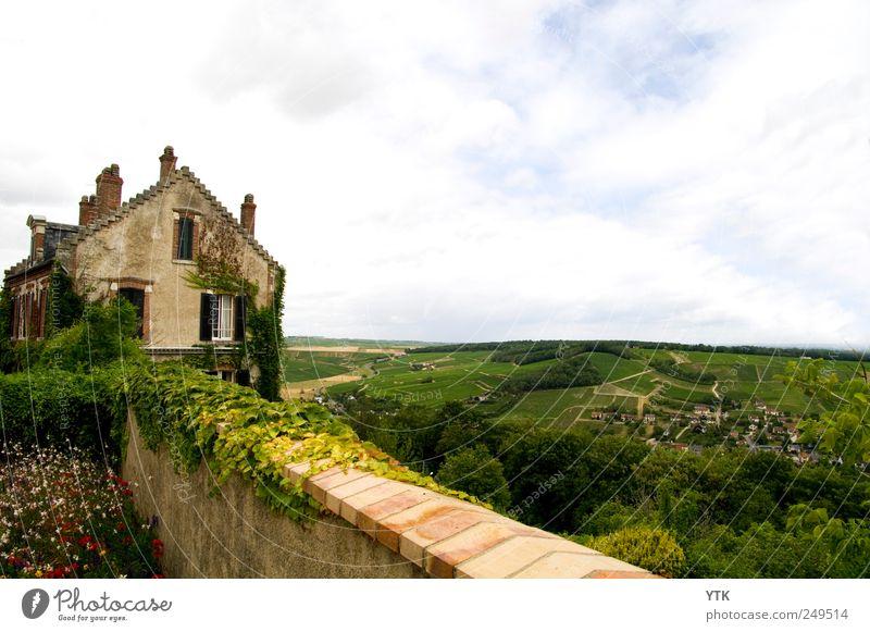 Der beste Blick im ganzen Dorf Himmel Natur Pflanze Sommer Ferien & Urlaub & Reisen Blume Wolken Haus Ferne Erholung Wand Fenster Umwelt Landschaft Gras Mauer