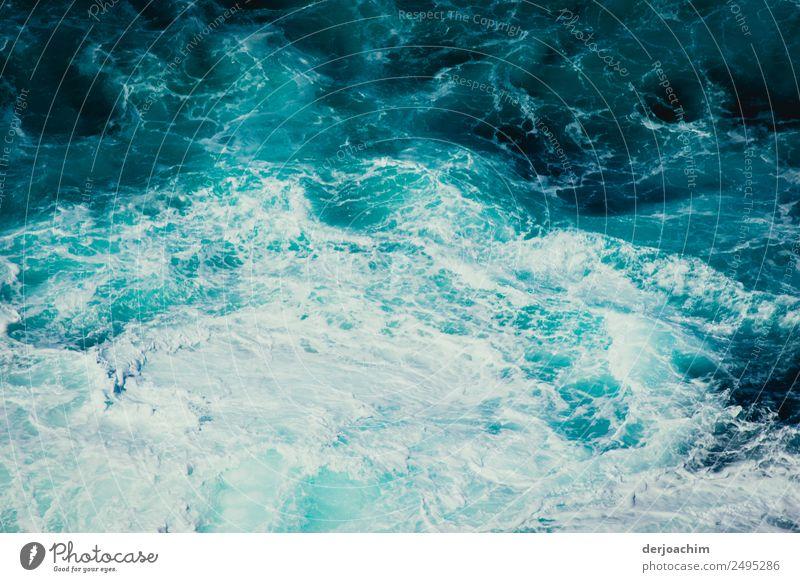 Durststrecke / Wasser ohne Ende. Kielwasser von einem Schiff. exotisch Leben harmonisch Meer Umwelt Natur Urelemente Sommer Schönes Wetter Wellen Queensland