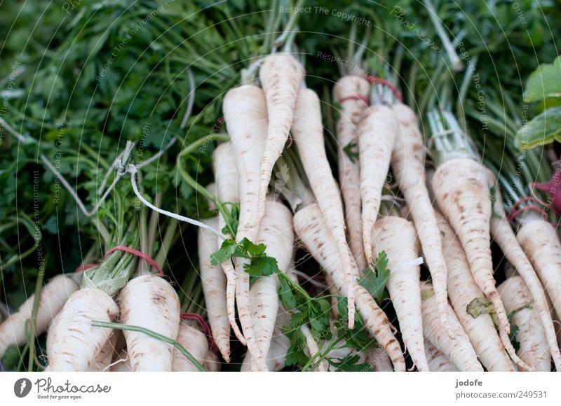 Petersilie, Pertersilie... weiß Ernährung Lebensmittel Gesundheit viele Kräuter & Gewürze Gemüse lecker Markt Vitamin Wurzel Petersilie Suppengrün Suppengemüse