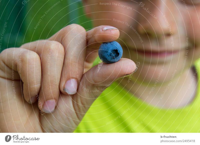 Leckere Heidelbeere Frucht Bioprodukte Kind Hand Finger Garten wählen festhalten frisch Gesundheit Blaubeeren zeigen lecker Süßwaren Beeren pflücken genießen