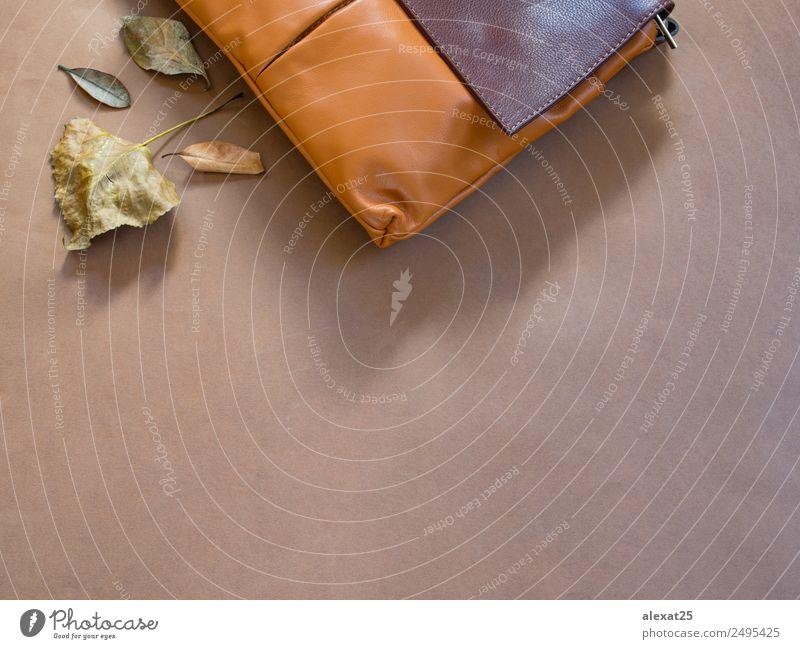 Herbsthintergrund auf Braun mit Kopierfläche Erntedankfest Natur Blatt Mode elegant Wärme braun gold Hintergrund Tasche Borte fallen flach Rahmen horizontal