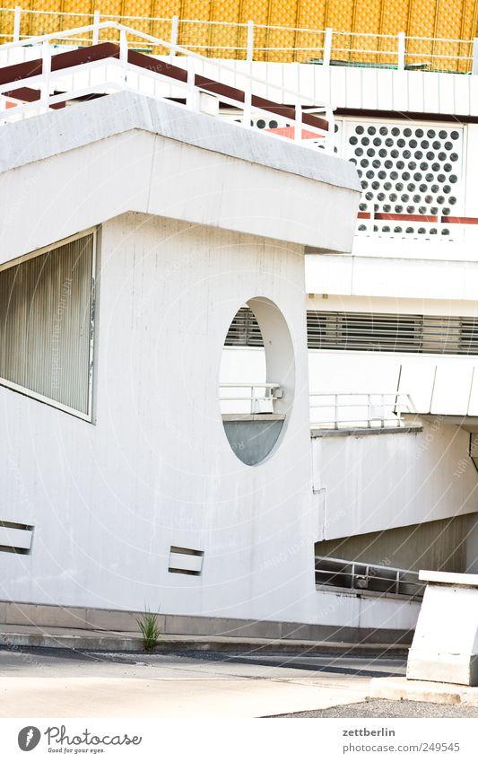 Philharmonie (Dienstboteneingang) Natur Pflanze schön Erholung Wand Architektur Gebäude Mauer Lifestyle Wachstum elegant modern Beton Bauwerk Wahrzeichen
