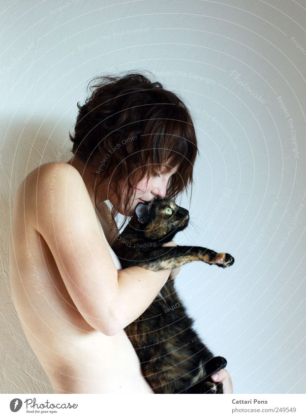 richtiger Umgang mit Pelz: Katze Mensch Frau Jugendliche schön Tier Erwachsene Liebe feminin Erotik nackt Glück Zusammensein Körper natürlich Sicherheit