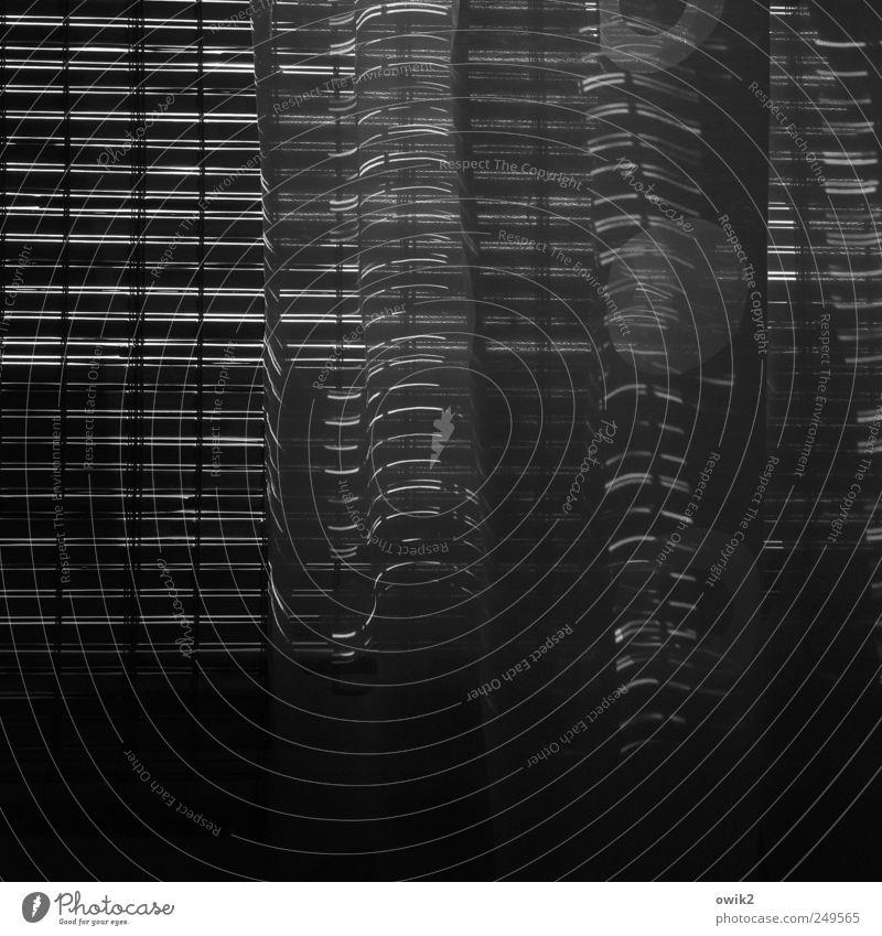 Kurven und Linien Häusliches Leben Fenster Vorhang Gardine Jalousie leuchten dunkel dünn einfach glänzend viele grau schwarz weiß Vorsicht Gelassenheit geduldig
