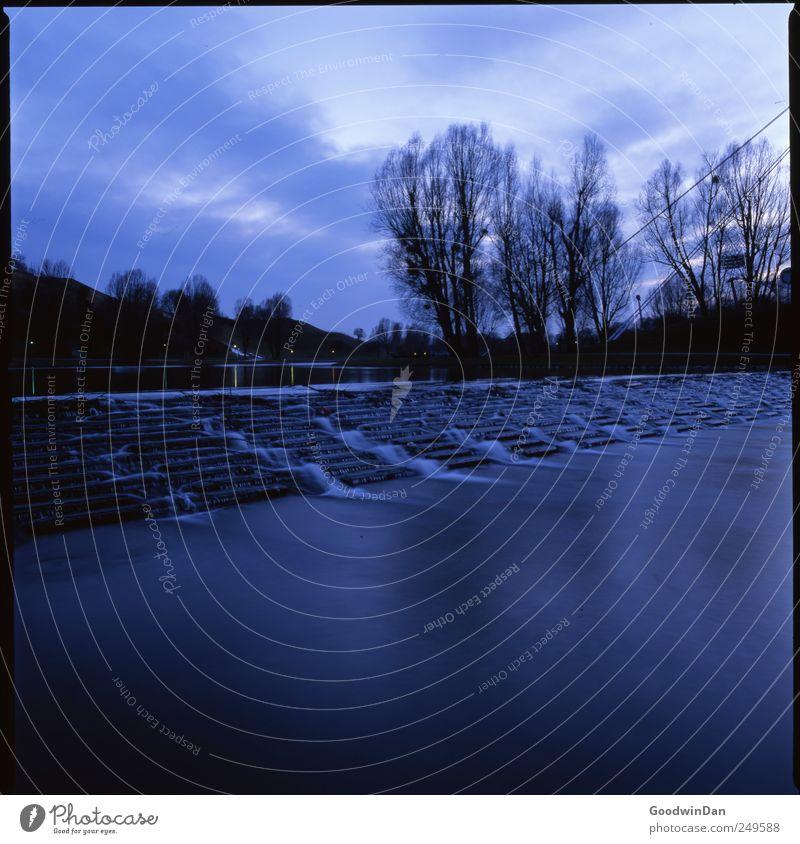 Abends. Umwelt Natur Wasser Wetter Schönes Wetter Park See Baum Treppe authentisch frei kalt nass natürlich schön blau Stimmung Farbfoto Außenaufnahme