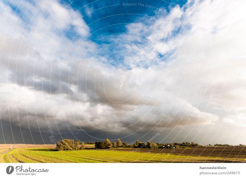 Wolkenbloß Ferien & Urlaub & Reisen Ferne Freiheit Haus Umwelt Natur Landschaft Herbst Schönes Wetter Wind Feld Dorf Menschenleer groß schön natürlich