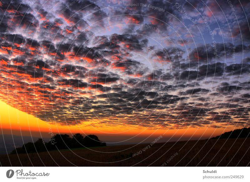 Wetterfront schön Wolken Landschaft Feld Schönes Wetter