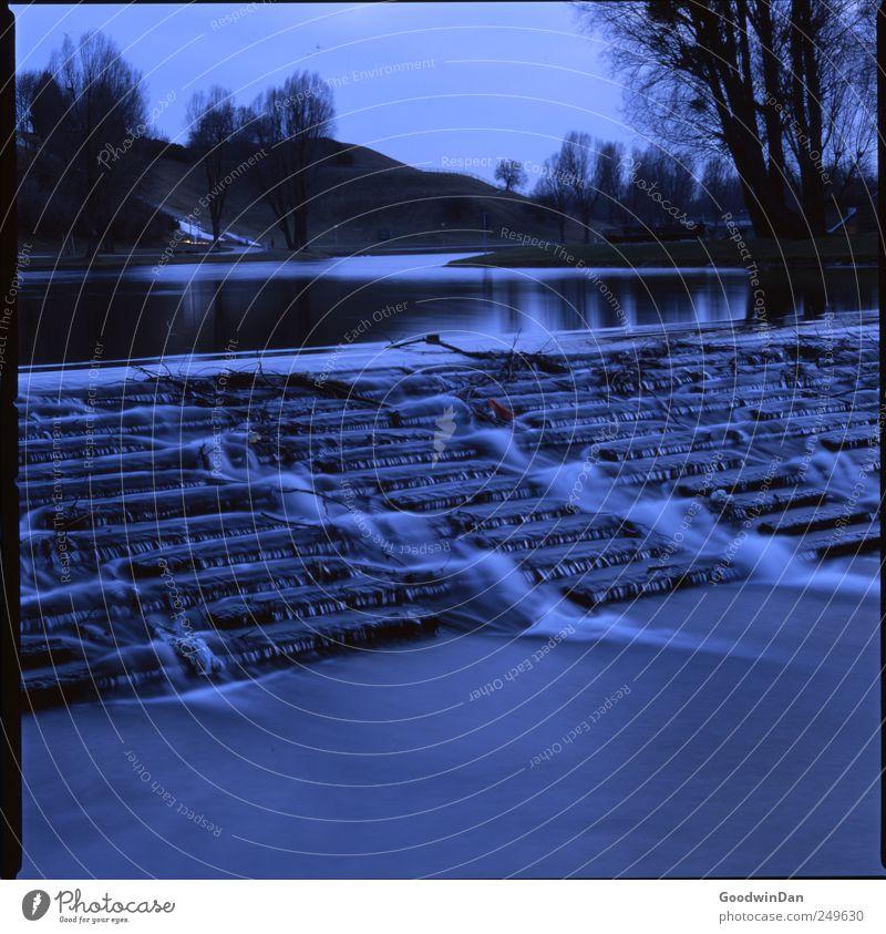 Abends. II Umwelt Natur Pflanze Baum Park See Treppe authentisch eckig einfach Unendlichkeit kalt nass trist Stimmung Farbfoto Außenaufnahme Menschenleer Tag