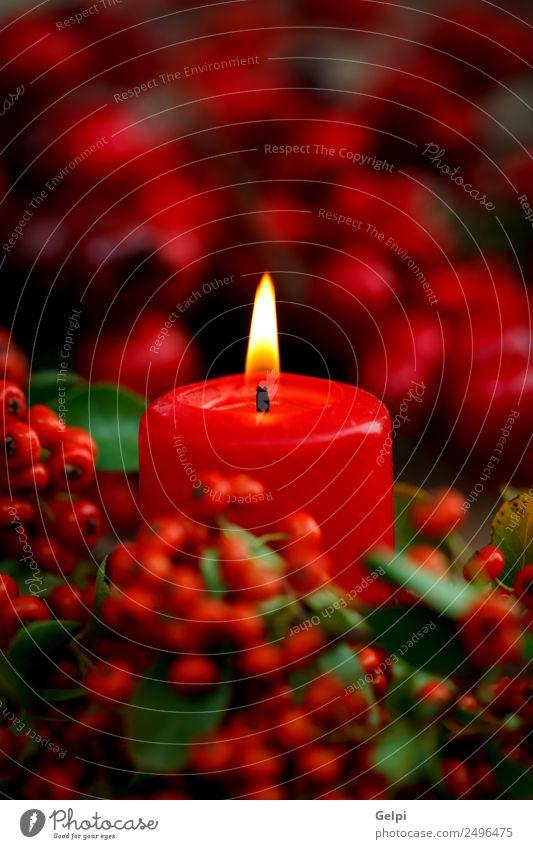 Weihnachtsbeleuchtung Design Glück Leben Dekoration & Verzierung Tisch Feste & Feiern Weihnachten & Advent Pflanze Herbst Blume Kerze Holz Ornament glänzend